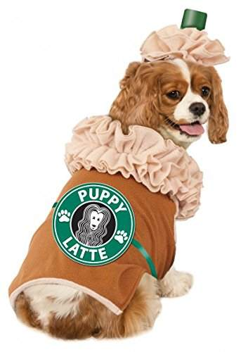 20 Halloween Costumes for Dogs Cats Halloween Pets