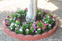 Adding Curb Appeal on a Budget: DIY Tree Ring Flower Planter