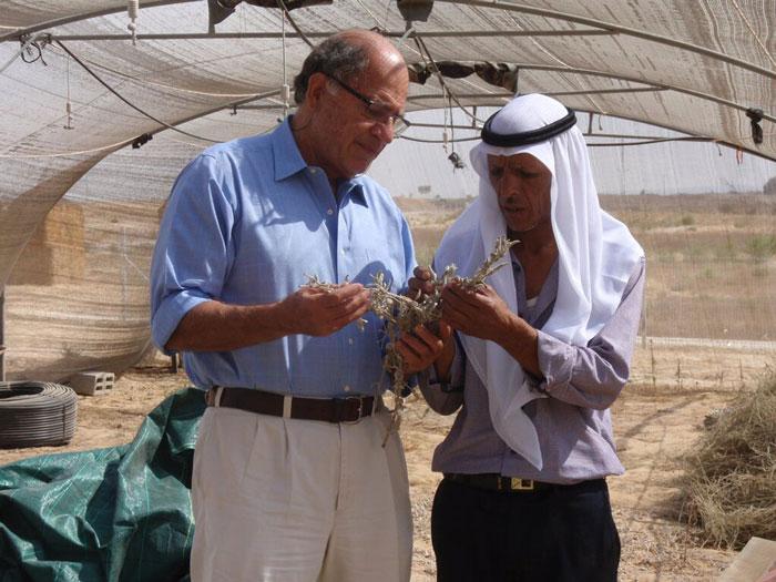 Michael Ben-Eli and Ali Alhawashla examining medicinal plants