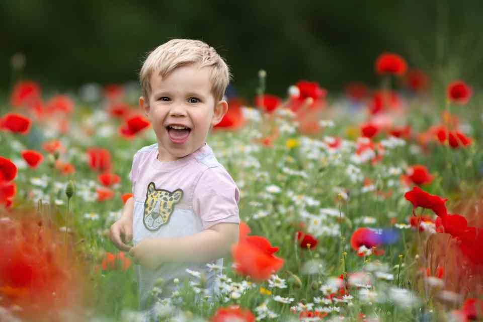 DIY Poppy Photoshoots in Gloucestershire