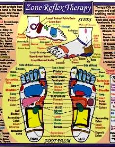 Foot reflexology on front also charts reflexologyacupressurechakraacupuncture more rh momentum