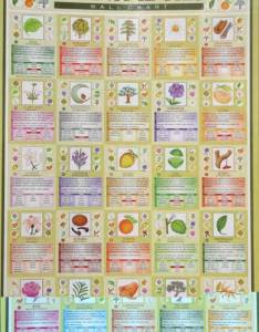 Dreams wall chart essential oils also charts by dynamo house momentum rh