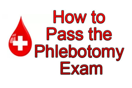 photo regarding Free Printable Phlebotomy Practice Test referred to as How in the direction of P the Phlebotomy Check (Coach Concerns