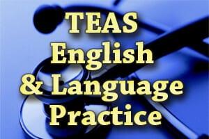 TEAS 6 English and Language Usage
