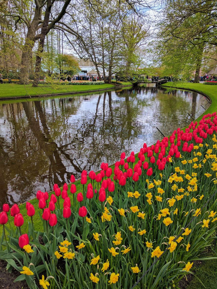 Our visit to Amsterdam and Keukenhof in April