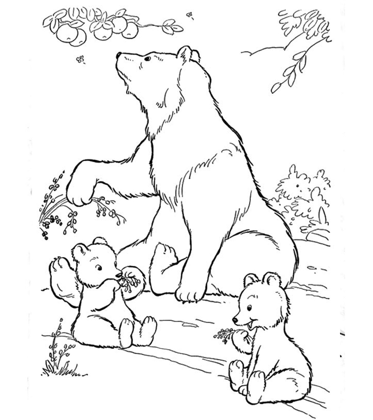 Bear Coloring Sheet