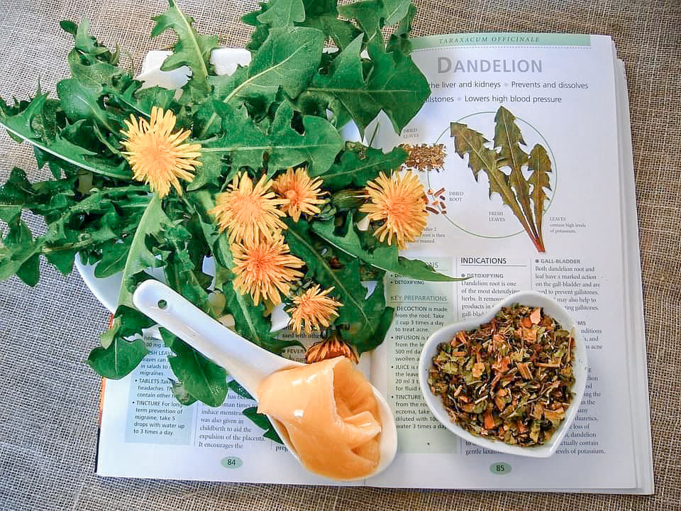 5 Reasons Why Dandelions Are More Than a Weed + Recipes