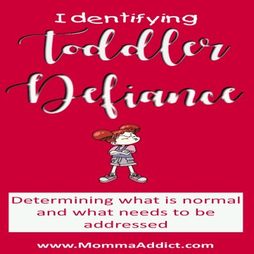 Dr. Momma discusses the need to determine if a toddler's behavior is normal or if it is defiance.