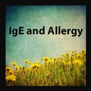 Dr. Momma discusses how IgE and allergies are the real allergy disease most of us think about and shares insightful information about how the problems occur