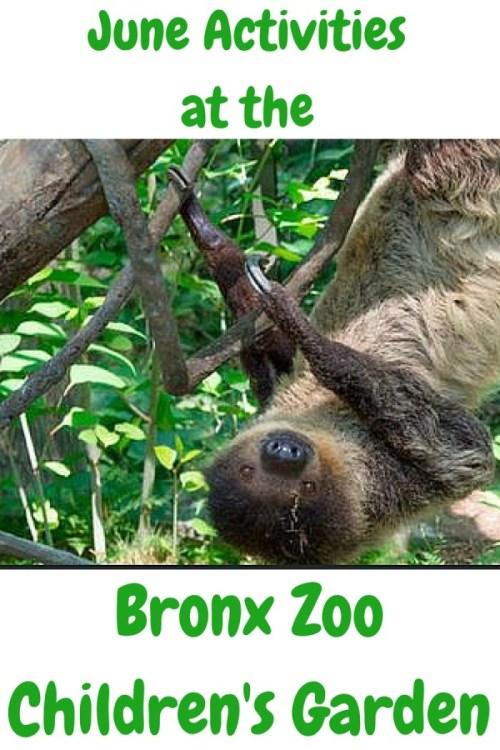 June Activities at the Bronx Zoo