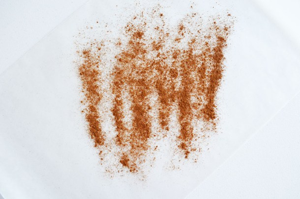 cinnamonornament4