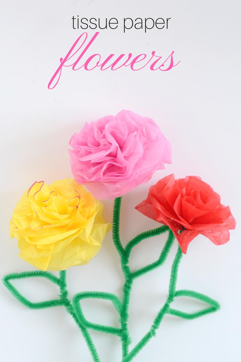 Diy Tissue Paper Flowers Momma Lew