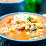 The Best Italian Minestrone Soup Recipe