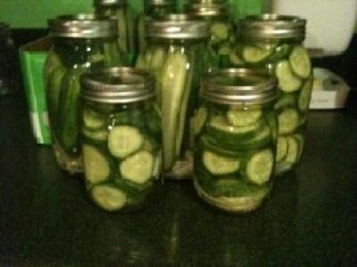 finished refrigerator pickles