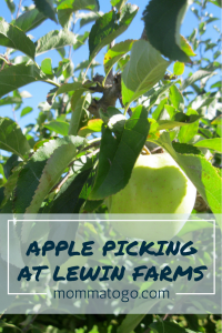 Apple Picking at Lewin Farms | Long Island Activities | Apple Picking | Apple Picking Tips | Long Island | Long Island Apple PIcking | Long Island Kids Activities | Fall Activities for Kids