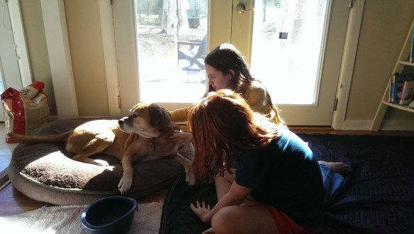 Maddie was here for a visit and much adored by everyone.