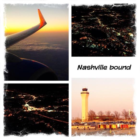 Gina's collage of the trip here.