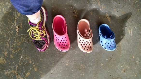 The years of tiny little crocs.