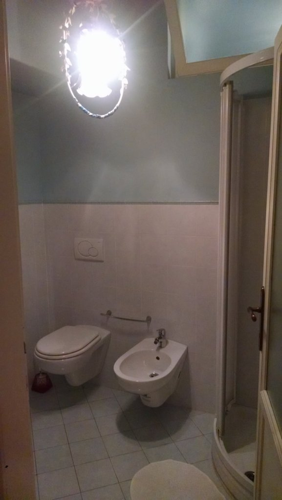 The larger of two bathrooms.