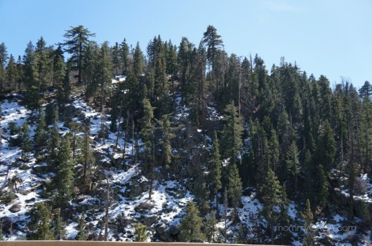 Beautiful shot of the snow covered Big Bear mountains
