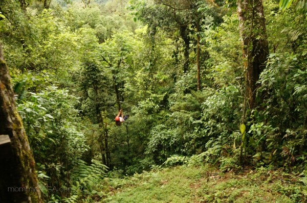 Tarzan swing through the rain forest in Costa Rica