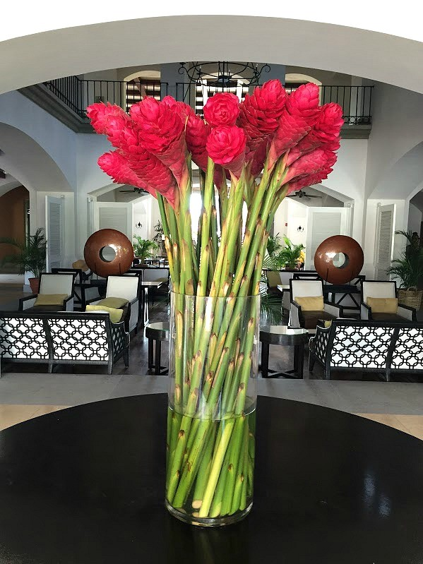 Panama, gorgeous torch flowers in the JW Marriott Panama lobby, mommyGAGA
