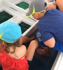 Beaches Negril FREE glass bottom boat