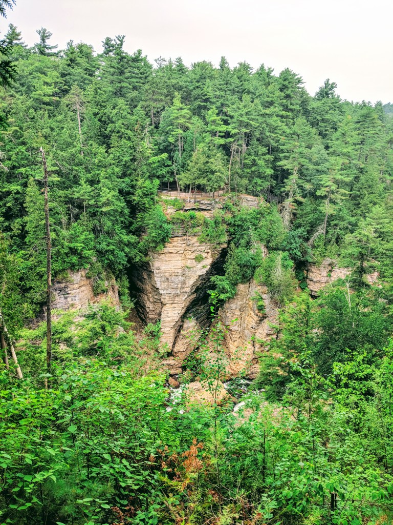 Ausable Chasm elephant head