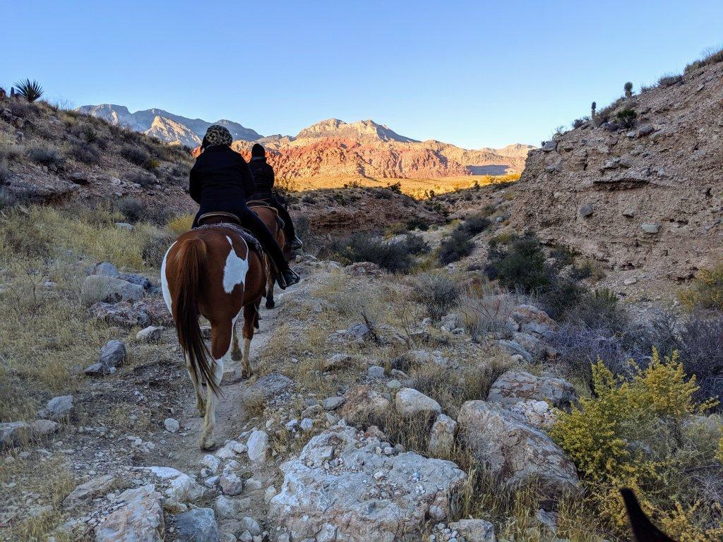 cowboy trail rides vegas