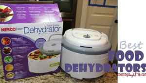 5 Best Budget Electric Food Dehydrators 2018