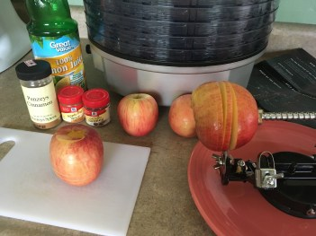 Healthy homemade apple chip snack recipe from Mommy: Home Manager