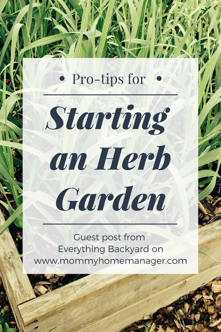 Starting An Herb Garden Is Healthy, Inexpensive, And Pretty Easy! Check Out  These