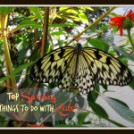 """Our Top Spring """"Things to Do"""" with Kiddos"""