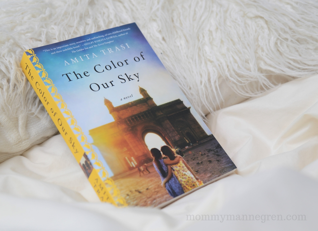 The Color of Our Sky -- Amita Trasi