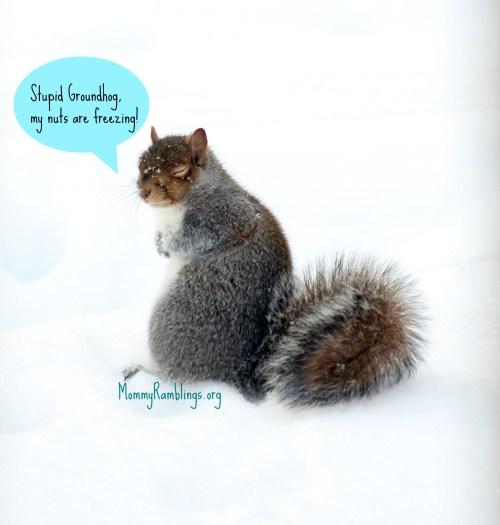 StupidGroundhog