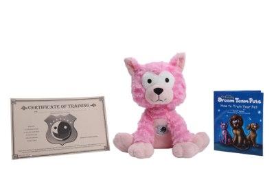 dream pets cat product