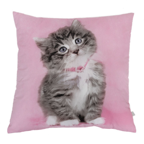 Rachael-Hale-So-Sweet-Kitty-Cushion