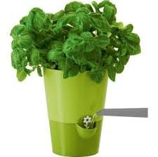 frieling smart planter green