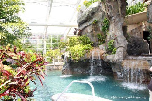 Biosphere Pool Complex