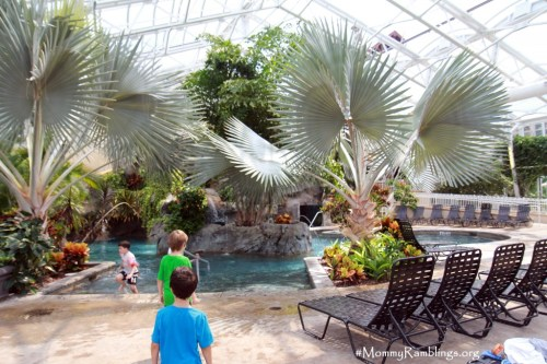 Biosphere Pool-Crystal Springs-#ExploreCrystal