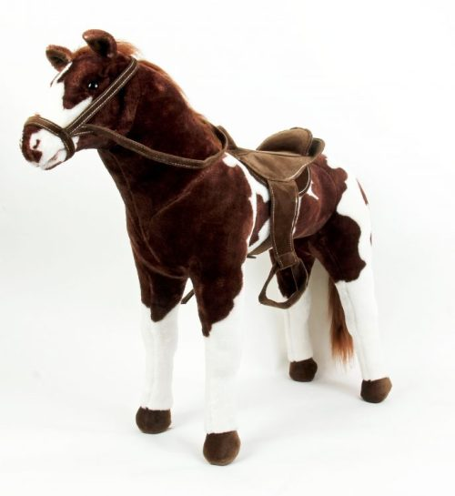 pinto-horse-1