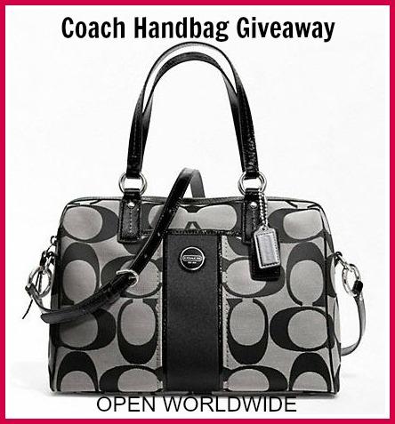 Coach Handbag Giveaway {closed}