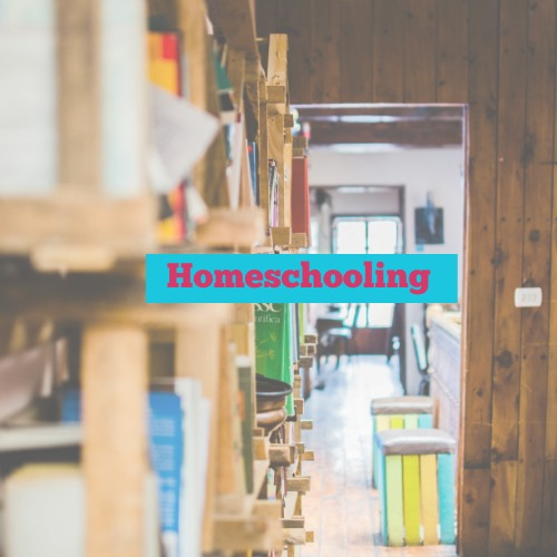 Blog Category-Homeschooling