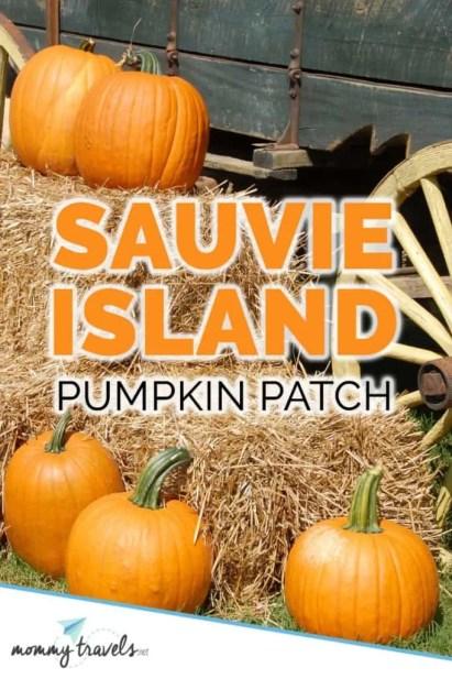 Sauvie Island pumpkin patch