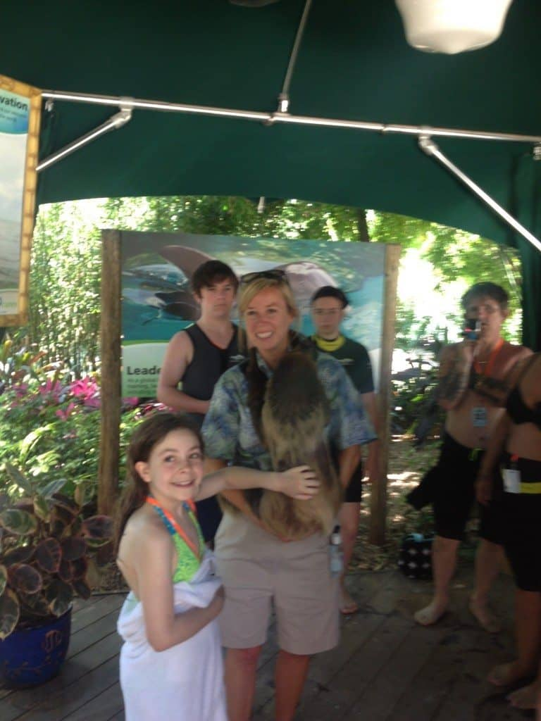 Discovery Cove animal meet and greets