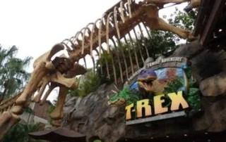 Dinosaur restaurant at Disney