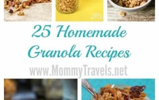 25 Homemade Granola Recipes