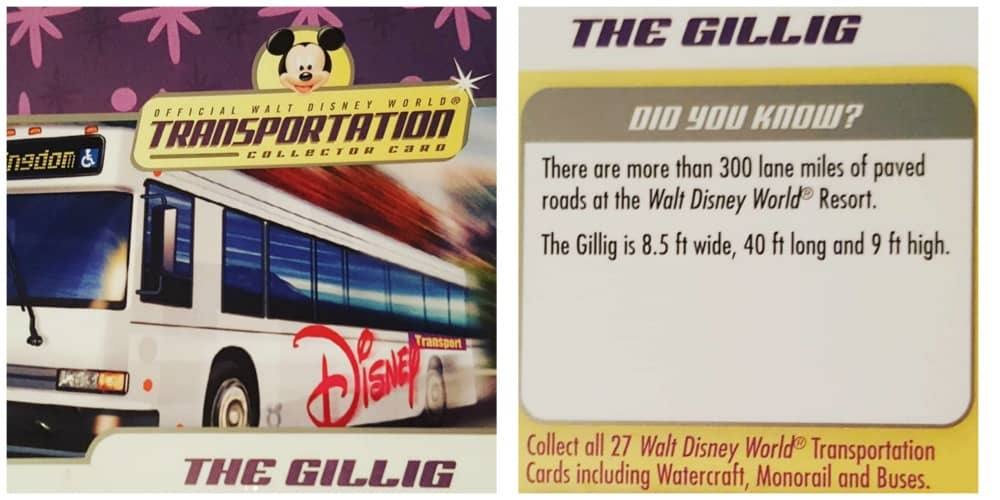 Disney World Transportation Cards