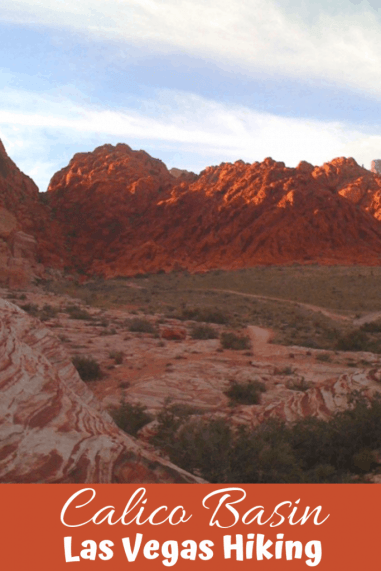 Calico Basin is the place to go near Las Vegas to hike the red rocks without paying an admission fee.