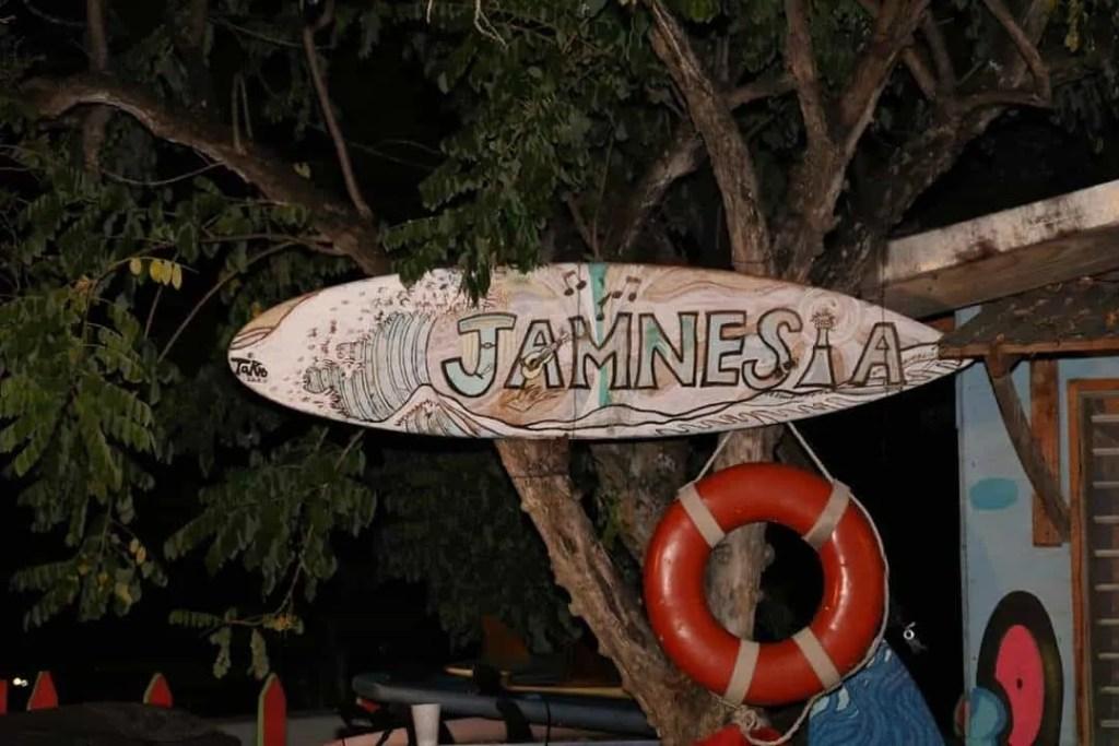 Jamnesia Surf Camp